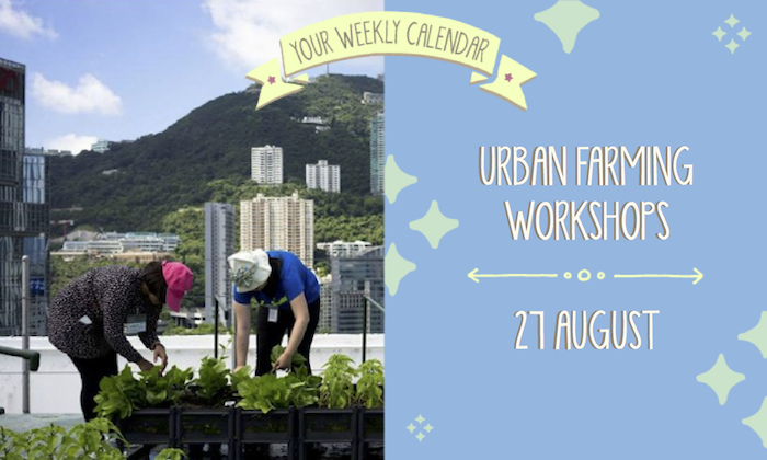 Your Weekly Calendar: Urban Farming Workshops with Rooftop Republic, Wise-Kids Farewell Party and more for your events calendar